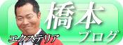 エクステリア 橋本ブログ