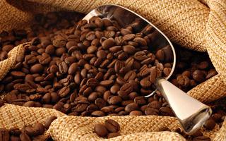 coffee_bean_1