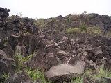 溶岩の数々