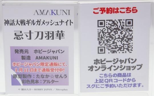 Megahobby2016A_AMAKUNI29