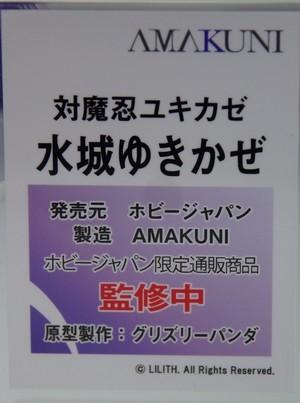 WF2019W_AMAKUNI_03