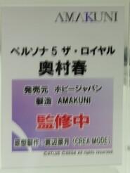 Megahobby_AMAKUNI14