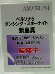 Megahobby_AMAKUNI12