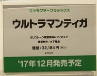 WF2017S_四万十川02