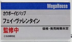 MegaHobby2019s_mega11