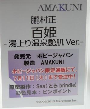 Megahobby_2017S_AMAKUNI33