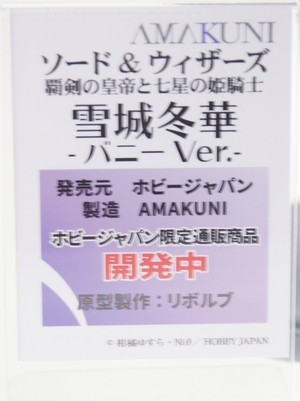 Megahobby2016A_AMAKUNI27