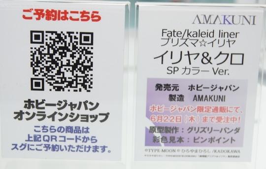 Megahobby_2017S_AMAKUNI20