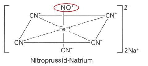 SNP-NO