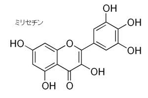 green tea-7