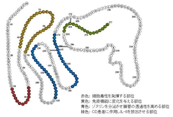 gliadin motifs