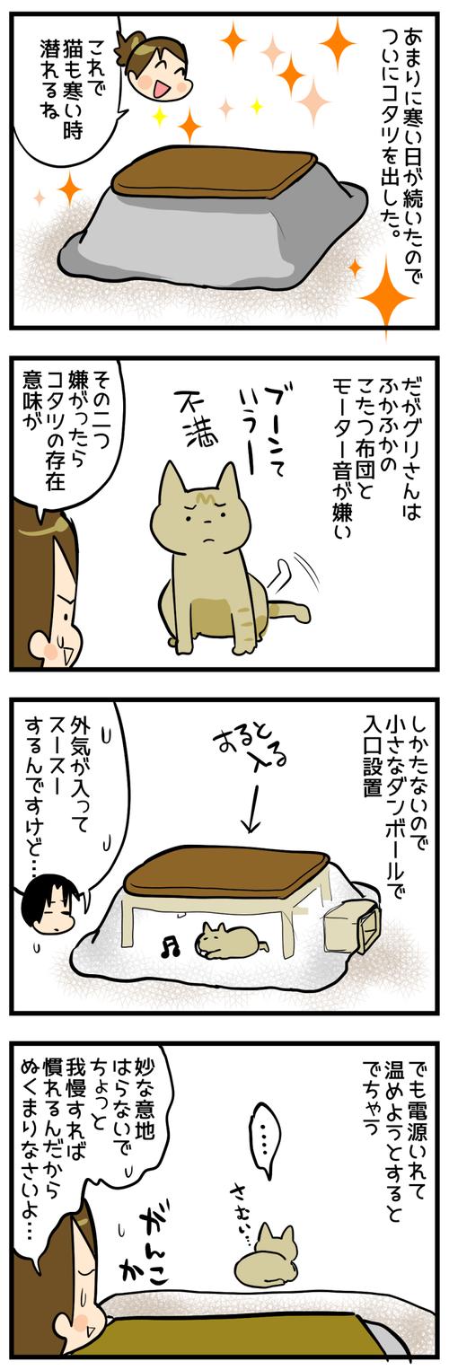 猫とコタツ