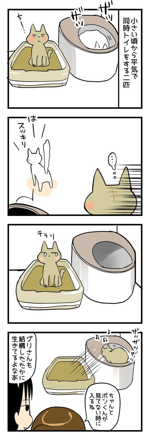 猫トイレ縦2