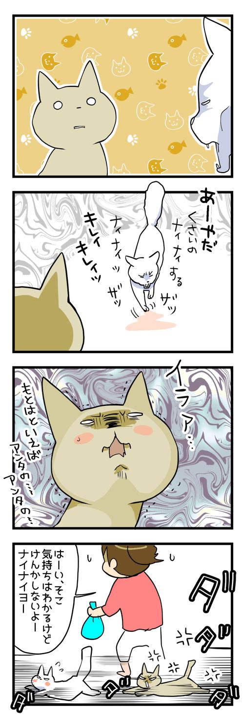 毛玉けぽー2