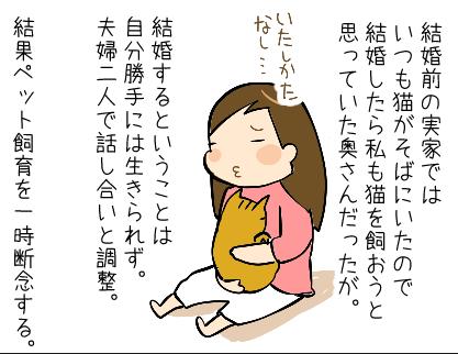 猫と暮らしたいの!