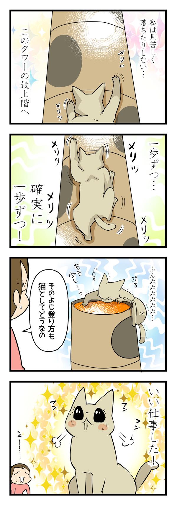 猫の運動神経4