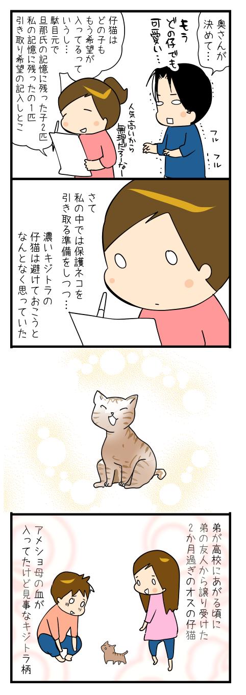 ネコさんを迎えたいの2-1