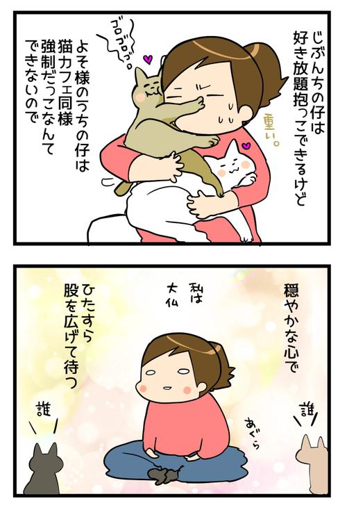 猫会イッチャマン邸2