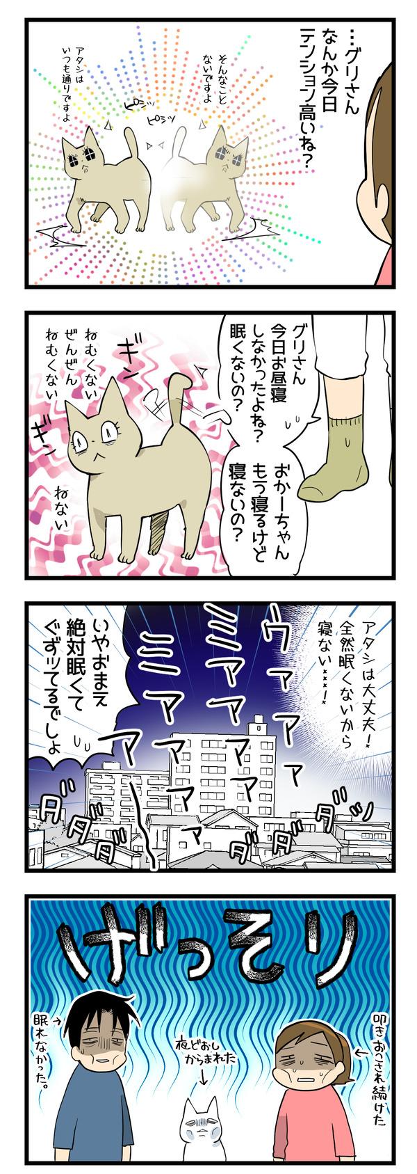 猫たちの変化2