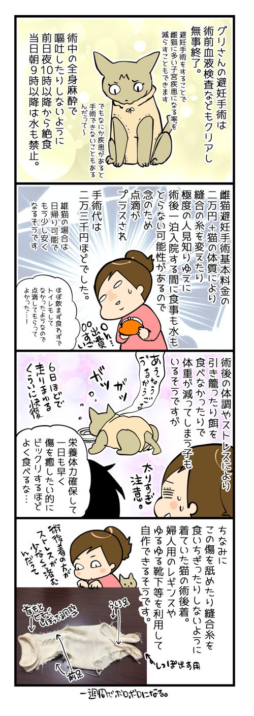 避妊手術覚書