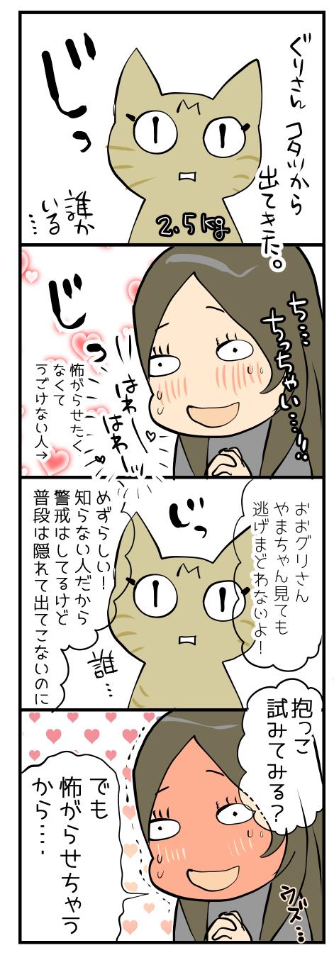 猫好きな友人2-2