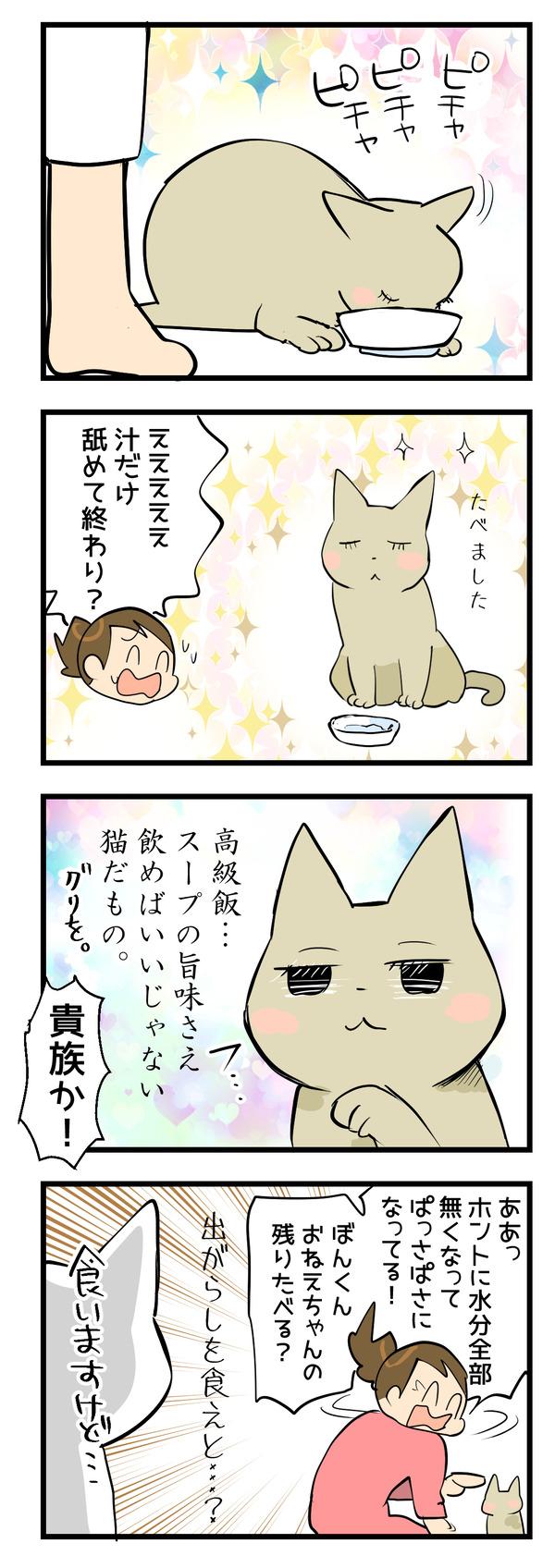 クリスマス猫2