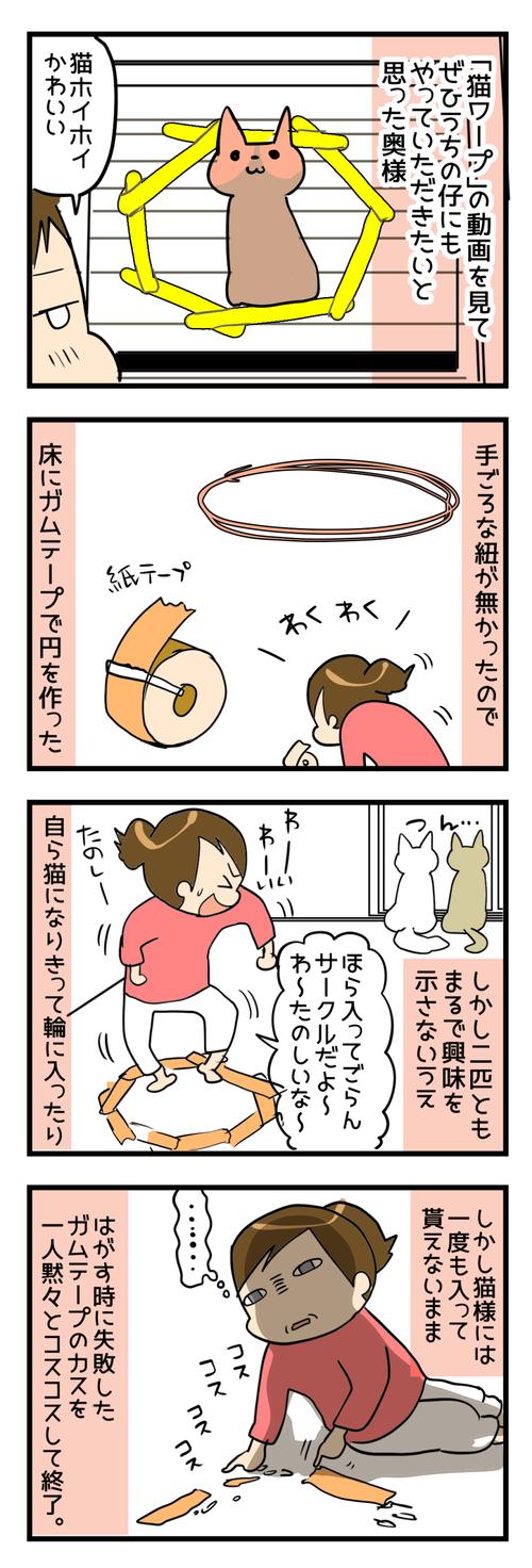 憧れの猫ワープ