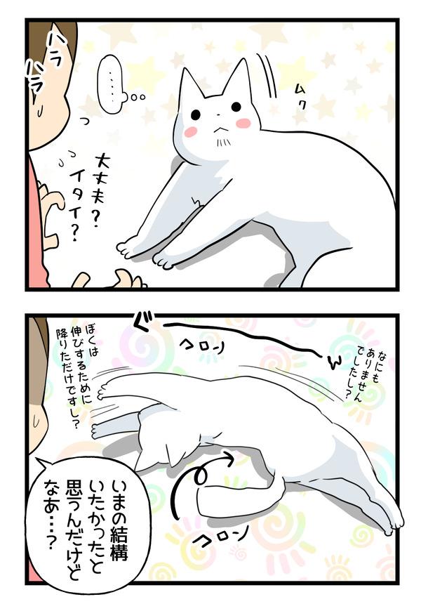 猫の運動神経2