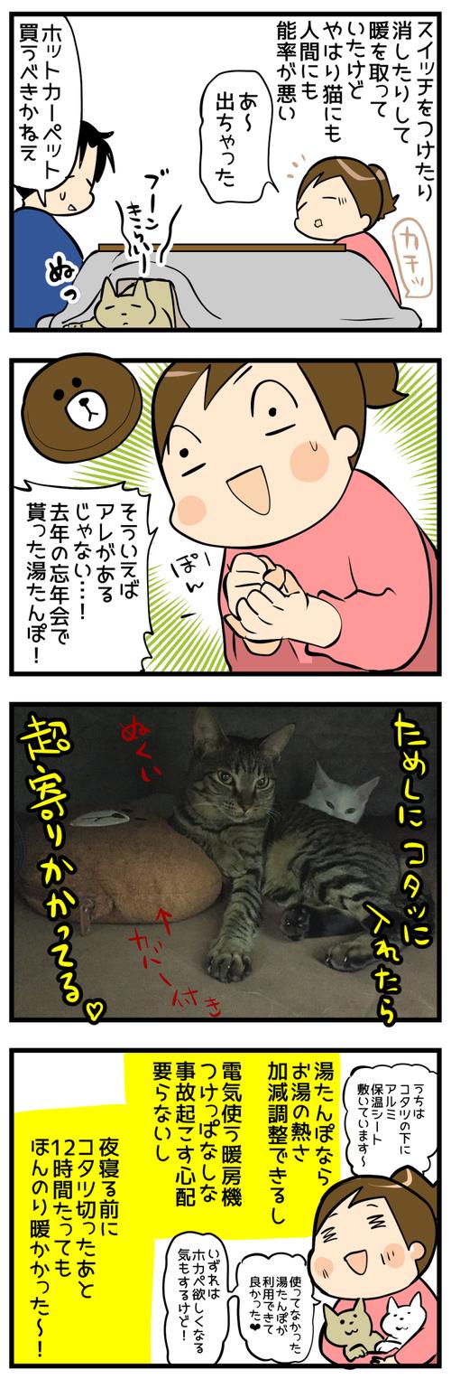 猫とコタツ2