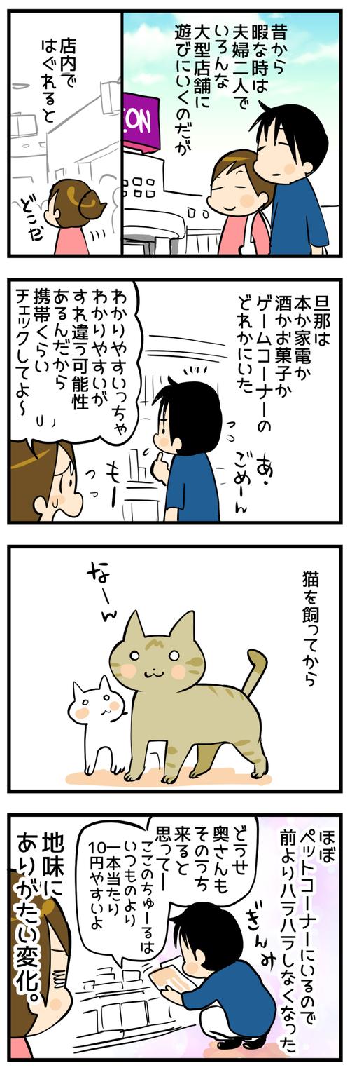 猫を飼ってから