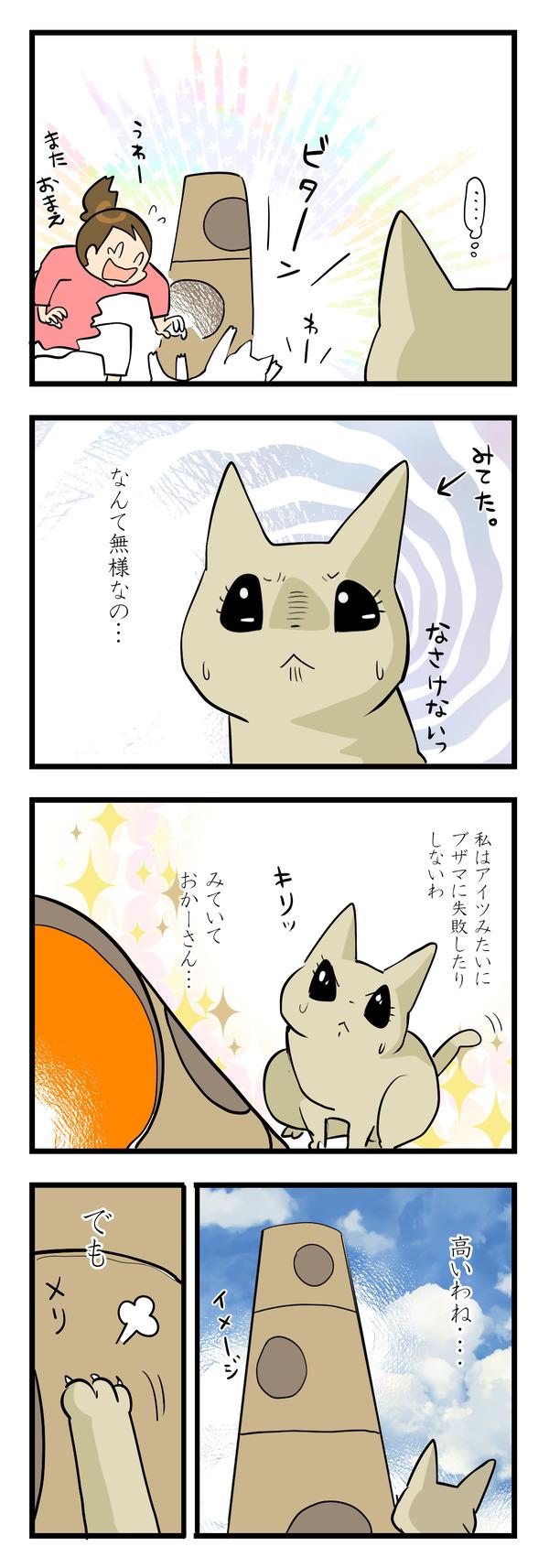 猫の運動神経3