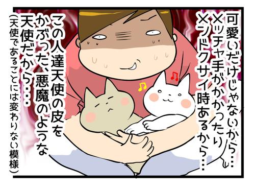 猫を飼うと1