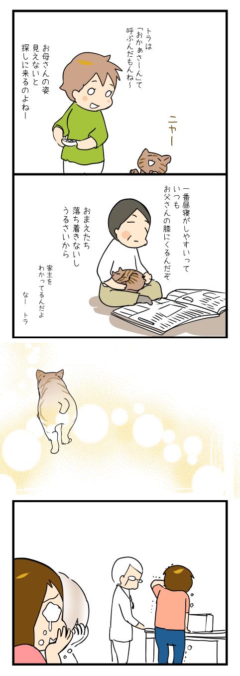 ネコさんを迎えたいの2-2