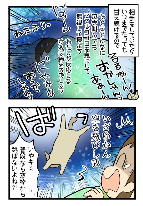 猫たちの変化3