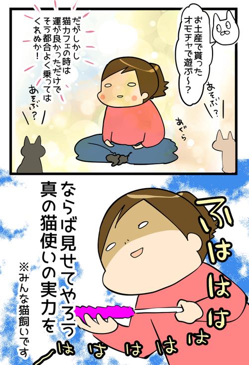 猫会イッチャマン邸3