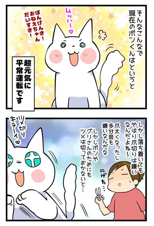 知覚過敏3