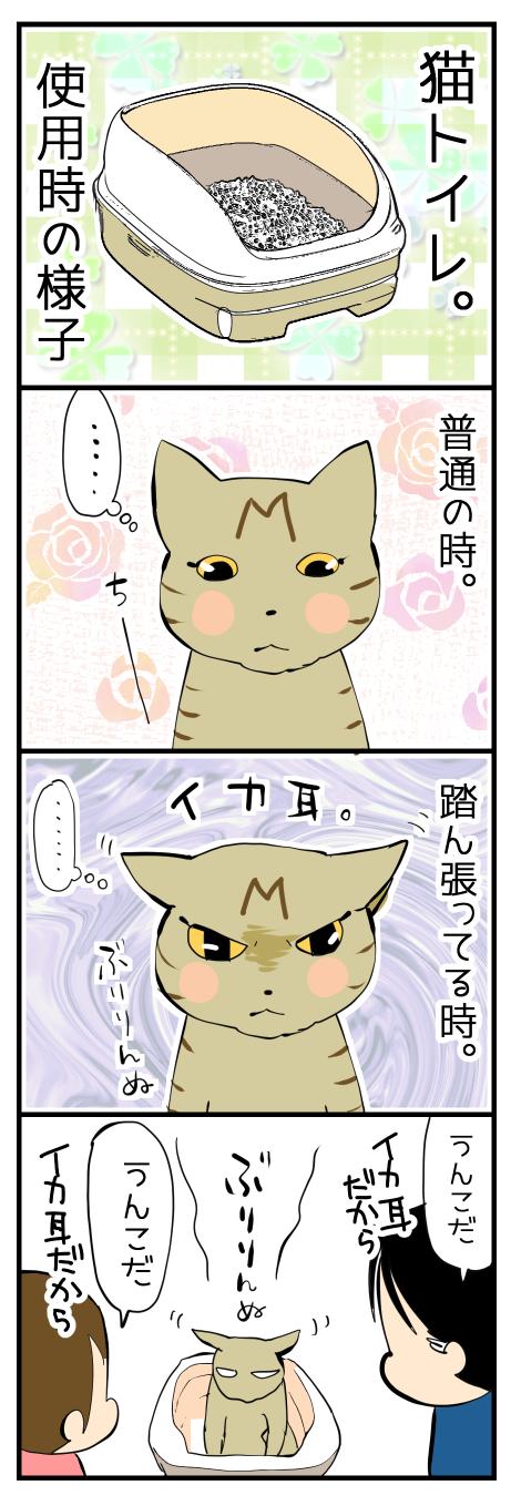 猫トイレ使用時