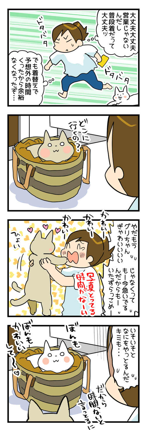 猫のお仕事