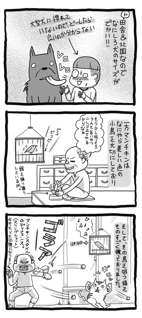 2015-PU3-9_05.jpg