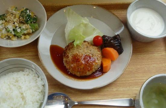 180506t_一汁二菜定食@タニタ