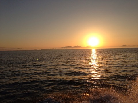 有明海のメバル釣り