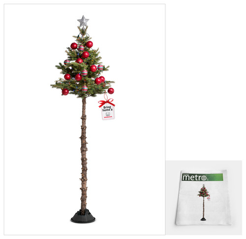 bhh_tree