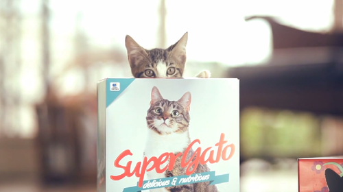 SUPERGATO on Vimeo (6)