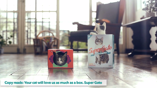 SUPERGATO on Vimeo (7)