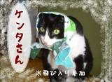 8-ケンタさん(ほ)※