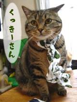 4-くっきーさん(ま)