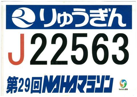 20151225100459-0002