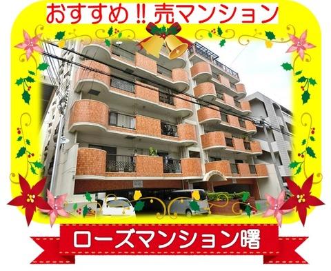 ブログ用ローズ紹介