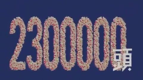トナカイ230000頭