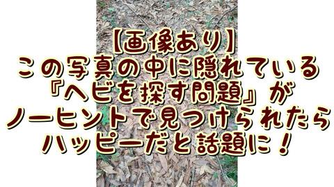 IMG_7735